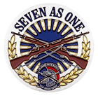 Seven as one USAF honor guard dual platinig