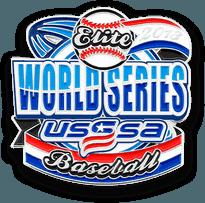 Baseball Trading Pin