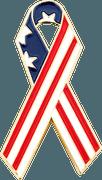 American Flag-2_sat
