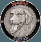 414509-GNV-K9-3D-Antique-Silver01