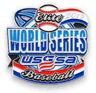 USSSA World Series Pin