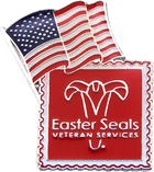 Easter Seals Veterans Flag Pin