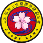JGSDF Zama Karate Patch