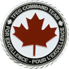 TFEG Command Team Multi-National Observers