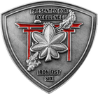 Iron Fist Six Combat Assault Battalion - Back