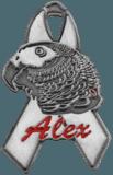 Alex Pin